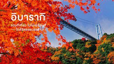 ปักหมุด รวมที่เที่ยวญี่ปุ่น ใบไม้เปลี่ยนสี อิบารากิ ใกล้ชิดธรรมชาติ