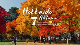 7 ที่เที่ยว ชมใบไม้เปลี่ยนสี ฮอกไกโด ญี่ปุ่น ถ่ายรูปสวย เดินชิล สะพายกล้อง ไปชมให้ได้ด้วยตาตัวเอง