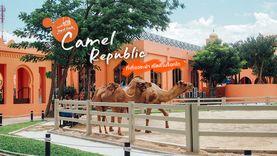 คาเมล รีพับบลิค Camel Republic ที่เที่ยวชะอำ สวนสนุกสไตล์โมร็อกโก เที่ยวใกล้กรุงเทพ บรรยากาศอาหรับ