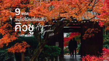 9 พิกัด ชมใบไม้เปลี่ยนสี คิวชู ญี่ปุ่น เดินชิล ถ่ายรูปสวย ห้ามพลาด (อัพเดต 2018)
