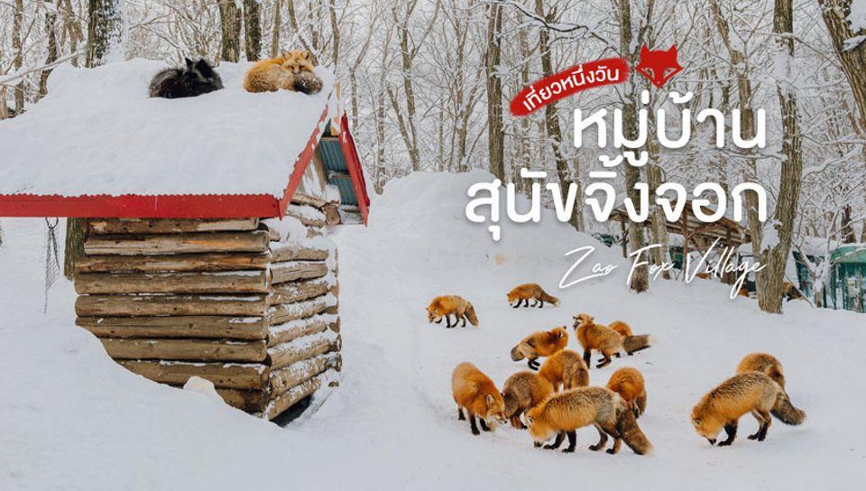 หมู่บ้านสุนัขจิ้งจอกซาโอะ Zao Fox Village ญี่ปุ่น เที่ยวหน้าหนาว ลุยหิมะ สุดฟิน