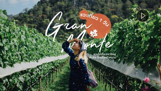 แวะชิลไร่องุ่นกราน-มอนเต้ GranMonte 1 วัน เที่ยวเขาใหญ่ หน้าหนาว ถ่ายรูปสวย (มีคลิป)