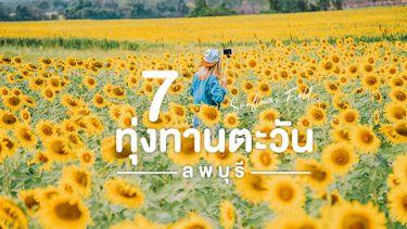 7 ทุ่งทานตะวัน ลพบุรี ที่เที่ยวถ่ายรูป อย่างชิล ชวนกันไปถ่ายรูปสวยๆ รับลมหนาว