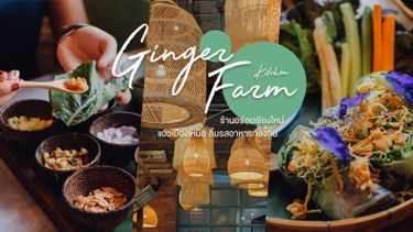 Ginger Farm Kitchen ร้านอร่อย เชียงใหม่ ใน One Nimman เที่ยวเหนือ ชิมอาหารท้องถิ่น