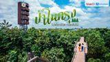 ที่เที่ยวกรุงเทพ ป่าในกรุง ไปฟอกปอด กอดต้นไม้ พื้นที่สีเขียวสำหรับคนเมือง