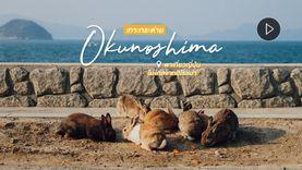 พาเที่ยว! เกาะกระต่าย Okunoshima Island ญี่ปุ่น ไม่ไกลจากเมืองฮิโรชิม่า คาวาอี้ขั้นสุด (มีคลิป)