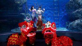 ซีไลฟ์ แบงคอก สร้างสีสัน วันตรุษจีน เชิดสิงโต โชว์นางเงือก พร้อมแจกอั่งเปา