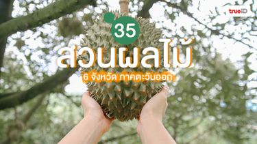 รวม 35 สวนผลไม้ 6 จังหวัด ภาคตะวันออก เด็ดจากต้น ชิมวนไปทุกสวน