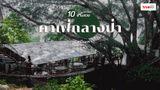 10 คาเฟ่ ร้านกาแฟในป่า ฟีลธรรมชาติ หน้าร้อนนี้หลบแดด นั่งชิลเย็นสบาย