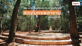 สวนโมกขพลาราม วัดสวยสุราษฎร์ธานี สตูดิโอธรรม กับ ความสุขที่แท้จริง