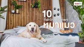 10 ที่พักหมาแมวพักได้ เที่ยวใกล้กรุงเทพ พาน้องไปด้วย ชิลสุดๆ