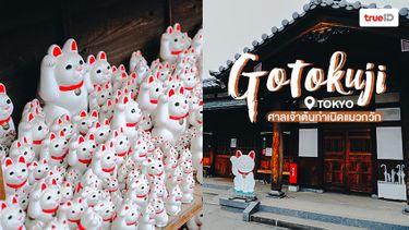 เที่ยวโตเกียว แวะหาแมวกวัก ที่ Gotokuji ศาลเจ้าต้นกำเนิดแมวกวัก