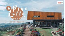 Pino Latte ร้านกาแฟเขาค้อ คาเฟ่ถ่ายรูปสวย สุดชิล จิบกาแฟท่ามกลางขุนเขา