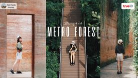 ป่าในกรุง เที่ยวธรรมชาติในกรุงเทพ ถ่ายรูปสวย Green Season 🌿