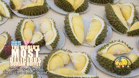 บุฟเฟ่ต์ผลไม้ อิ่มอร่อยใน งาน Thailand Fruit Festival 2019 ที่ เซ็นทรัลเวิลด์