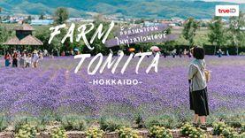 เที่ยวฮอกไกโด ทุ่งลาเวนเดอร์ ฟาร์มโทมิตะ Farm Tomita ลั้ลล้าหน้าร้อน