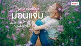 ม่อนแจ่ม เที่ยวทุ่งดอกไม้สีม่วง ดอกเวอร์บีน่า เชียงใหม่ ถ่ายรูปสวย รับหน้าฝน