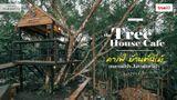 บ้านต้นไม้ คาเฟ่ ถ่ายรูปสวยๆ  ที่ กระบี่ เอนกายพักใจในคาเฟ่กลางป่า ที่ กระบี่