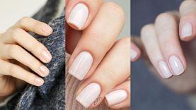 รวมไอเดียทาเล็บสีชมพู Pale Pink หลากโทน มือดูสะอาดแถมสวยง่ายคล้ายสีธรรมชาติ!
