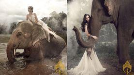 24 นางสาวไทย2559 เดอะเรียลลิตี้ บุกป่า กับชาเล้นจ์ เดอะจังเกิ้ล สาวไทยกับช้างไทย