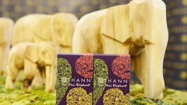 ธัญ (THANN) เชิญชวน ส่งต่อความดีร่วมกับมูลนิธิเพื่อนช้าง กับโครงการ 'THANN for Thai Elephant'