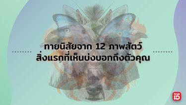 ทายนิสัยจาก 12 ภาพสัตว์ สิ่งแรกที่เห็นบ่งบอกถึงบุคลิกที่คุณซ่อนไว้