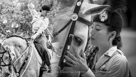 ที่สุดแห่งความงดงาม พระองค์หญิงสิริวัณณวรีฯ ทรงม้านำซ้อมริ้วขบวนพระบรมราชอิสริยยศ