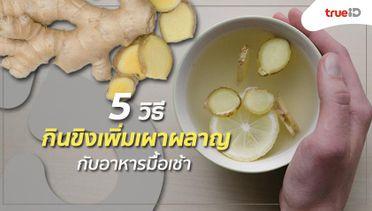 5 วิธีกินขิง เพิ่มการเผาผลาญ กับอาหารมื้อเช้า ลองยัง!